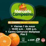 Mercado campesino mañana viernes en Mall Plaza
